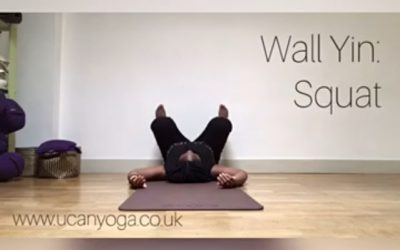 Wall Yin: Squat