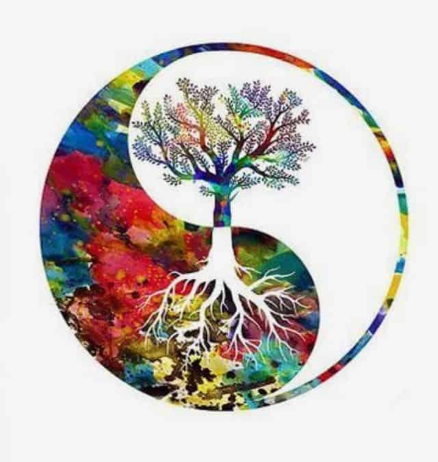 Nurture & Nourish: A Late Summer Yin & Yoga Nidra Workshop