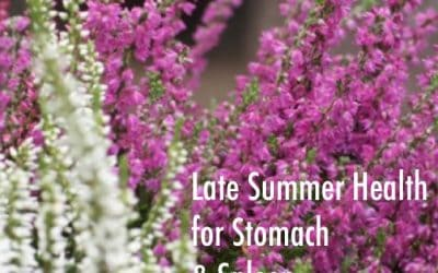 NOURISH – Late Summer Health for the Stomach & Spleen